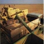 transport cereale