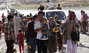 Displaced people from the minority Yazidi sect flee violence in the Iraqi town of Sinjar