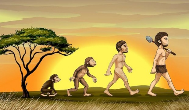 evolutie_darwinism
