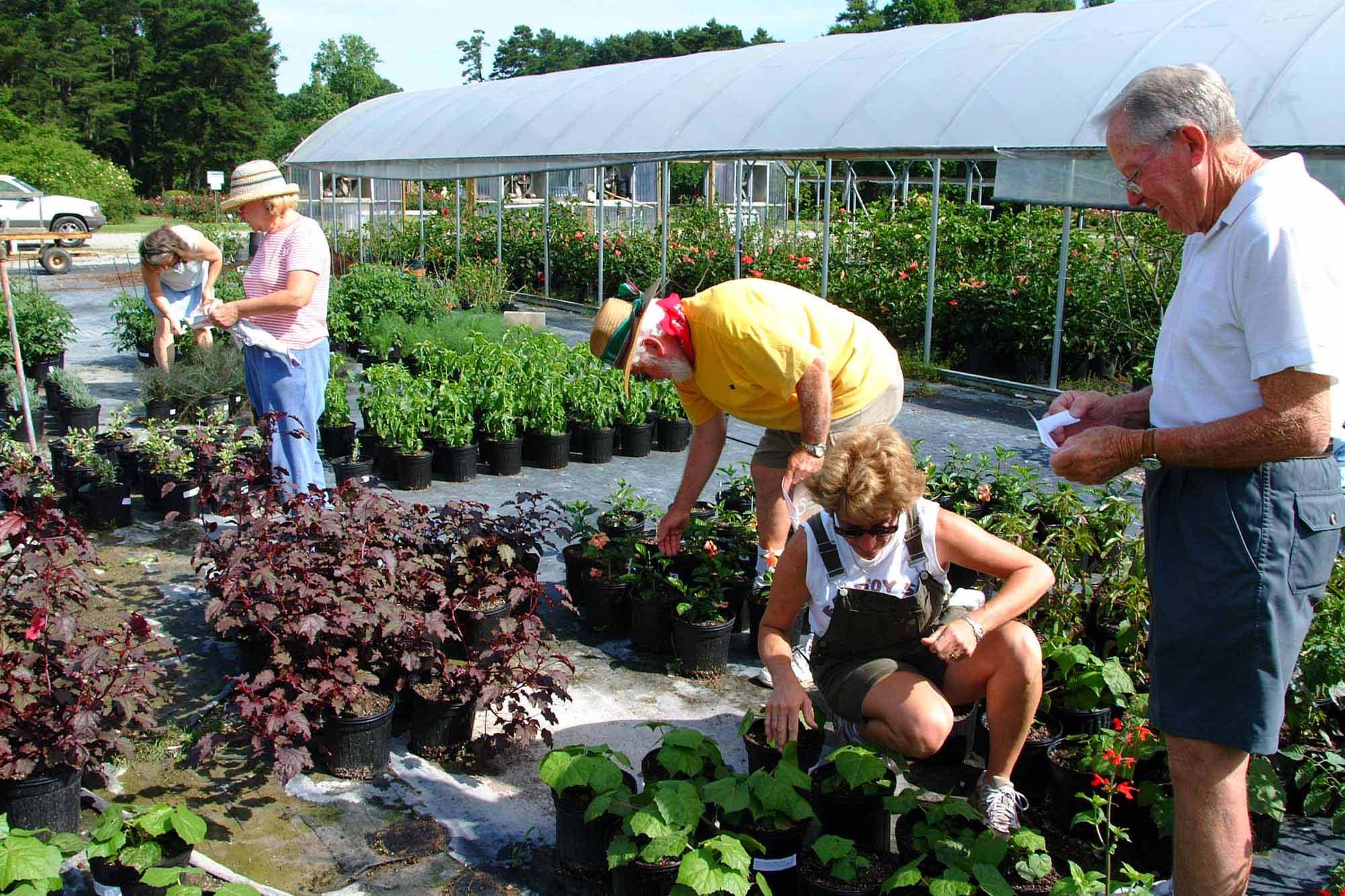 Make Friends By Growing A Garden