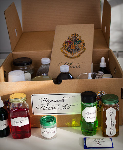 Harry Potter potions kit