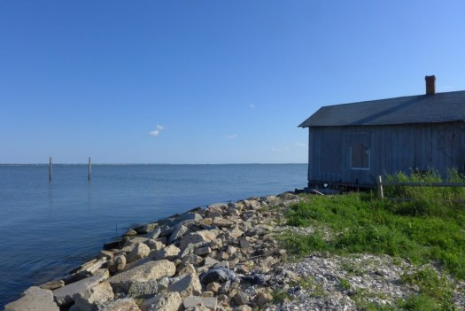Abandoned oyster shed, Greenbackville, VA