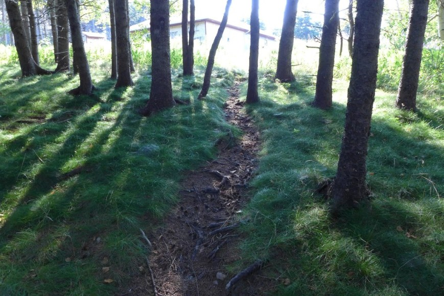 Gampo Abbey pathway