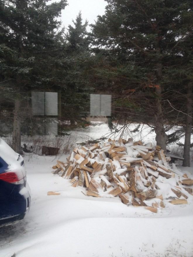 Beginning wood pile