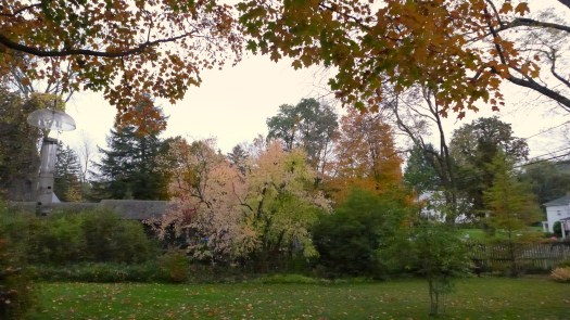 The Side Yard - Spencertown