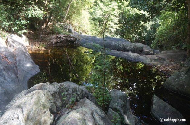reef-bay-trail-hike-stjohn-usvi-fresh-water-pool