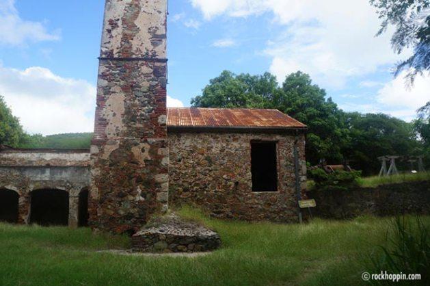 reef-bay-trail-hike-stjohn-usvi-sugar-mill