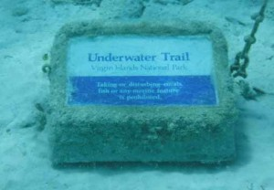 trunk-bay-unterwater-trail