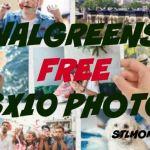 Walgreens FREE 8×10 Photo