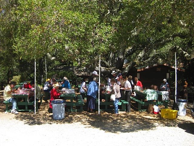 picnic 2014 SM3