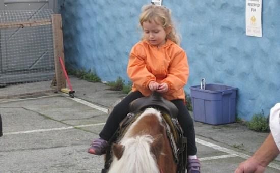 Girl on pony (2)