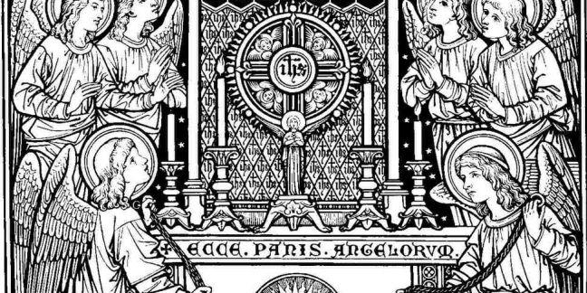 Corpus Christi Homily