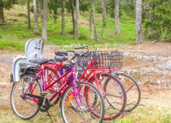 Die Fahrräder für unsere Gäste an unserem Ferienhaus Stockholm.