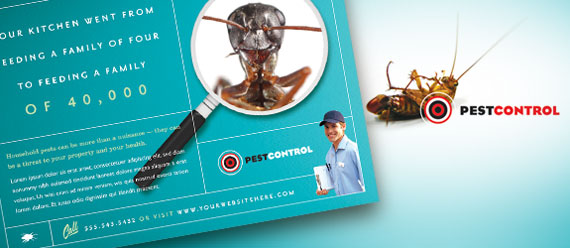 Pest Control Brochure, Postcard, Flyer & Ad, and Stationery Designs