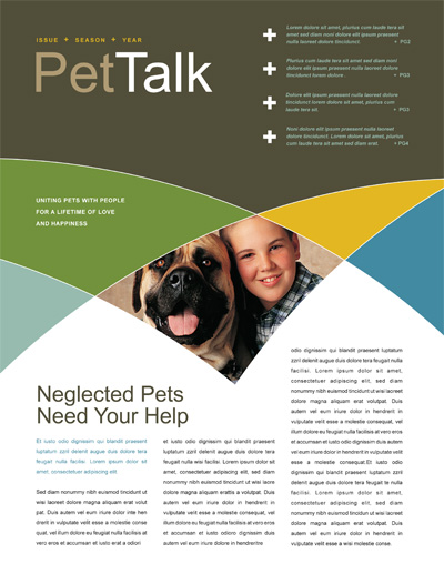 Animal Shelter Newsletter Design