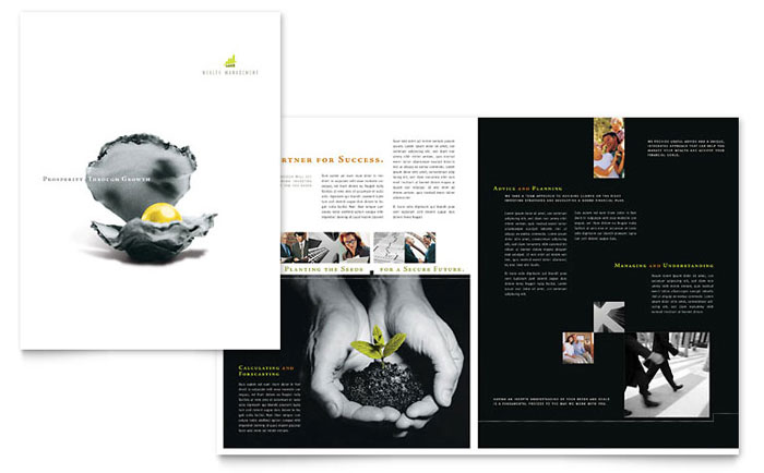 Wealth Management Brochure Design Idea - Brochure Cover