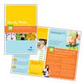 Weight Loss Clinic Brochure Design
