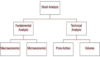 fundamental analysis of sbi