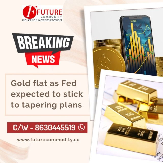 This image has an empty alt attribute; its file name is 11-OCT-FUT-GOLD-1024x1024.jpg