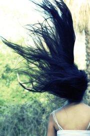 beautiful windy themed