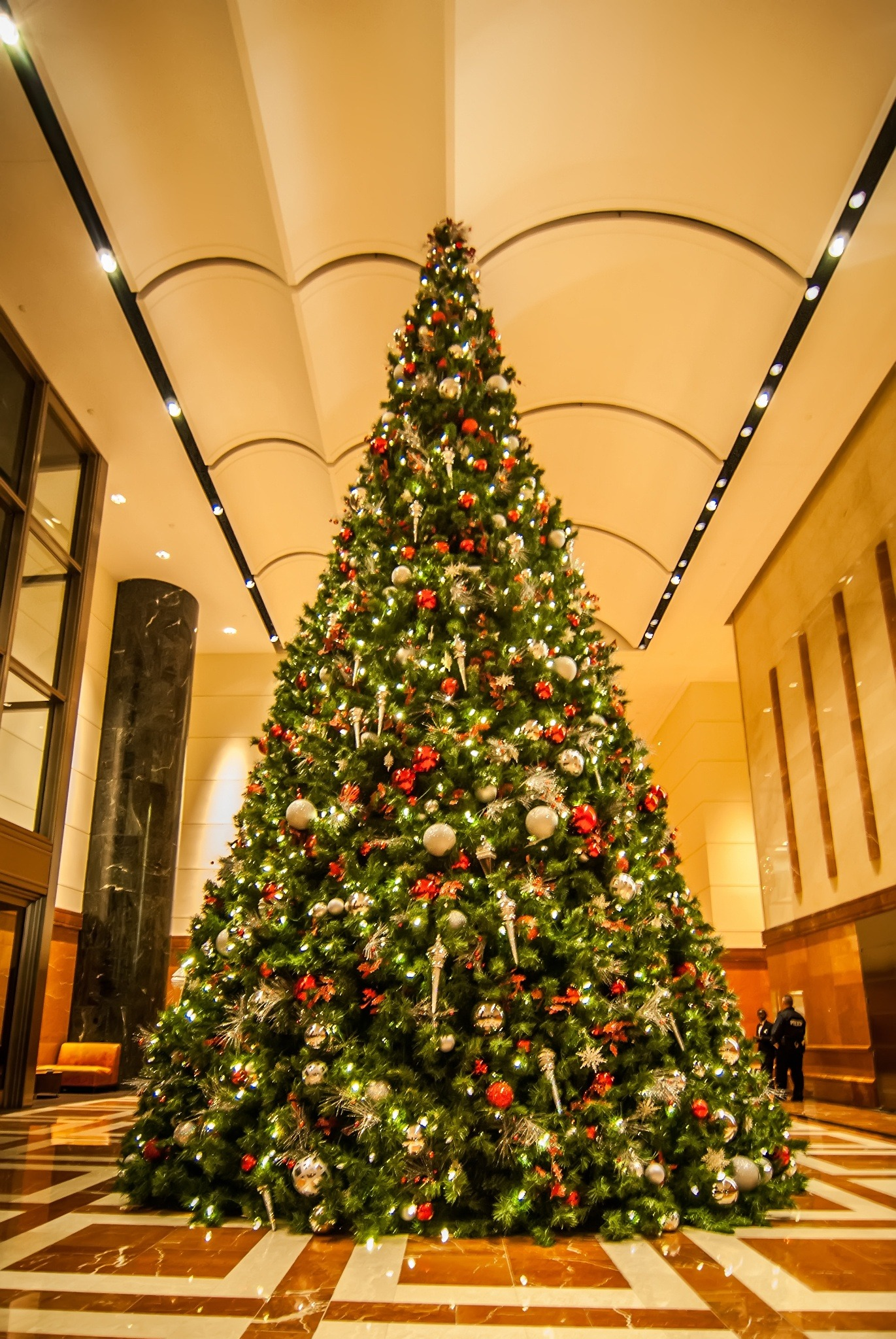 Festively Decorated Christmas Trees Blog