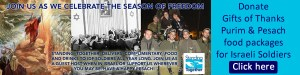 donate Purim and Passover food packages