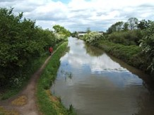Canal towards Stoke