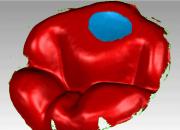 fig-web