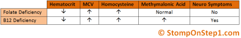 Homocysteine MEthylmalonic acid B12 Folate Deficiency