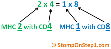 Mnemonic CD8 CD4 MHC 1 2 MHC I II T Cell
