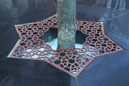 El diseño aparece también en los anillos de plantas que rodean los árboles...