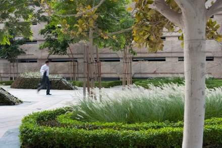 En las zonas de acceso se han plantado césped de altura media, que deja libre a la vista la entrada del complejo e invita a visitarlo, el movimiento de la hierba cuando sopla el Shamal le da una atmósfera especial.