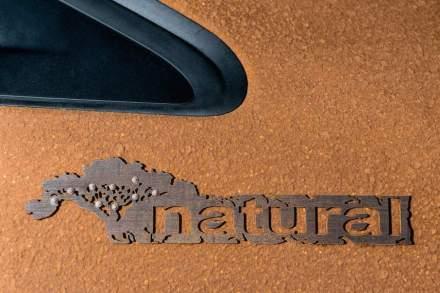 """El logo del """"208 Natura"""" es un estilizado pernambuco, pero en bambú."""