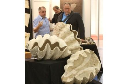 Naturstein in seiner ganzen Vielfalt präsentiert die Stone+tec 2015, die vom 13.-16. Mai 2015 im Messezentrum Nürnberg stattfindet.
