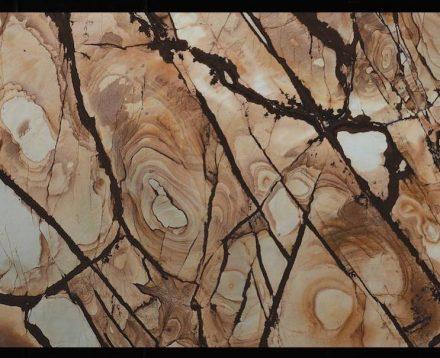 """""""Woodstone"""" é um nome apropriado para esta rocha superexótica do estado do Ceará."""