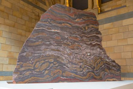 The banded iron slab in the Hintze Hall in London's Natural History Museum. Photo: © The Trustees of the Natural History Museum, London 2017. All rights reserved.