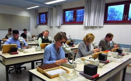 Kursteilnehmer beim Mikroskopieren. Foto: EFBZ