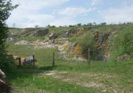 Blick in den ehemaligen Steinbruch des so genannten Juramarmors. Foto: GeoPark