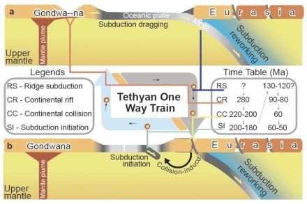 This is a schematic showing how subduction drives the ,Tethyan One-way Train' between terminals of Gondwana and Eurasia. a. After consumption of mid-ocean ridge, subduction dragging causes the rift of the rear continent. b. Drifts of the detached continent will finally collide toward the subduction-directed continent, and then continental collision induces subduction initiation in a new ocean. Since the oceanic subduction initiation, the mid-ocean ridge will be consumed towards the subduction direction then repeat the process of ,a'. The light to dark belt represents oceanic crust with ages from young to old.