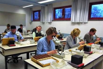 Die Teilnehmer eines Kurses beim Mikroskopieren.