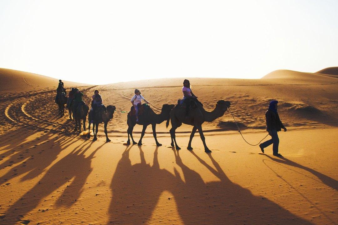Top 5 Travel Essentials
