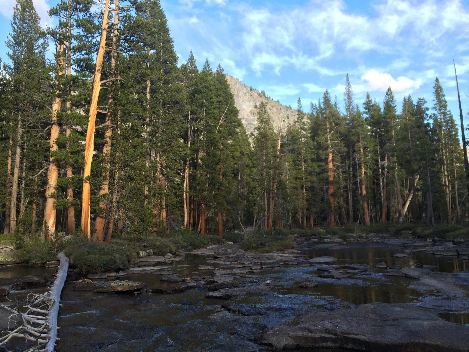 Bear Creek near the Lake Italy Trail (2)