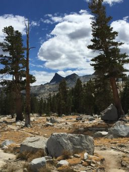 Coming down from Donohue Pass (3)