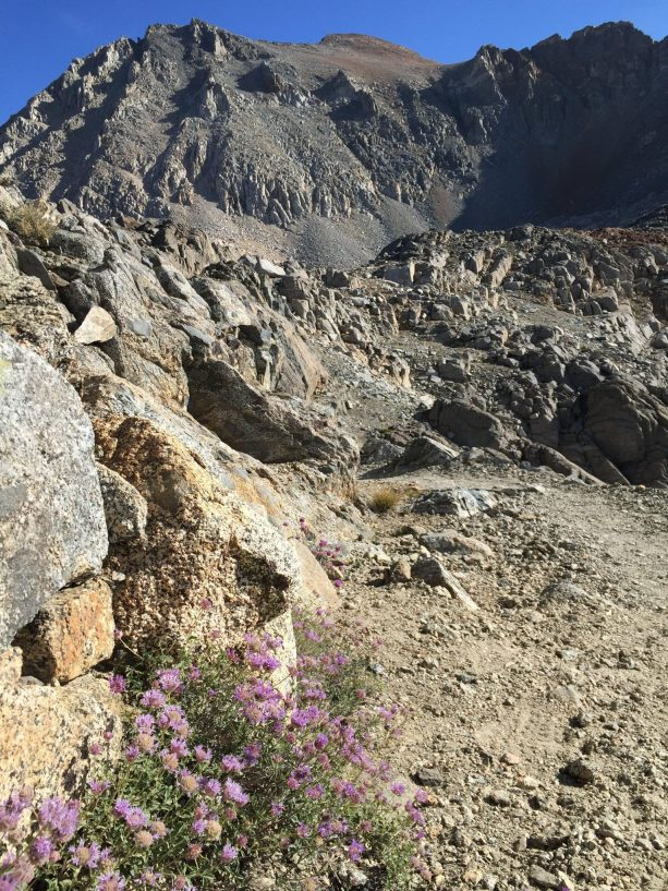 Coming down from Pinchot Pass (2)