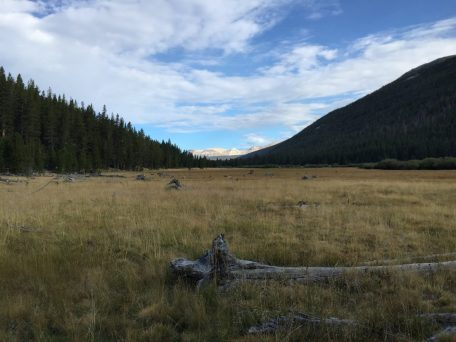 Lyell Canyon (3)