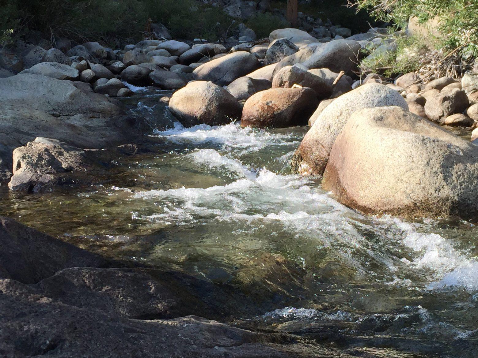 Piute Creek (6)