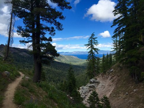View of Lake Tahoe through the trees from high above on the PCT