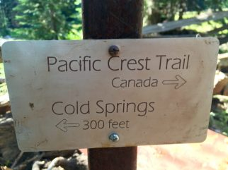 Etched metal PCT sign pointing the way to Canada
