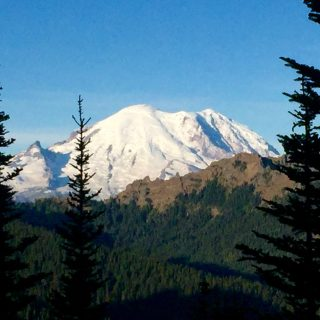 Snow covered slopes of Mount Rainier dominating the skyline against a cloudless blue sky