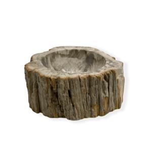 Petrified Wood Bowl
